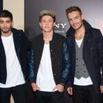 Документальна стрічка про One Direction стала найкасовішим фільмом Британії